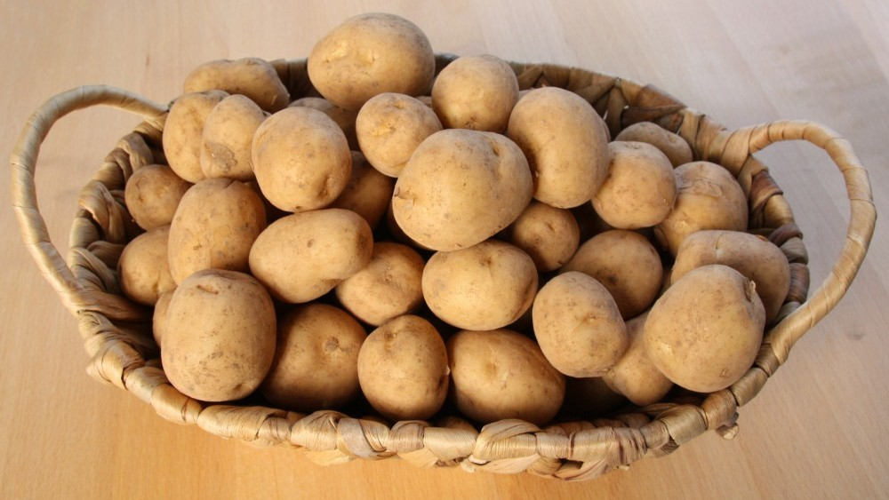 Majorcan new potatoes make their way to UK